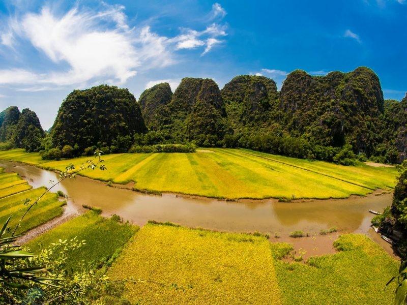 phototrip - Mùa vàng Sông Ngô Đồng